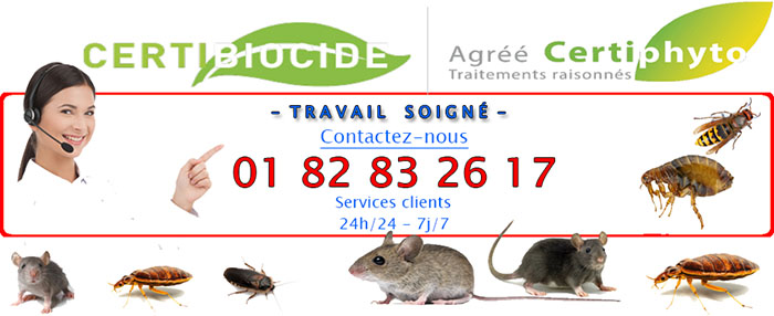 Insectes Claye Souilly